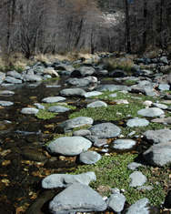 oak creek boulders